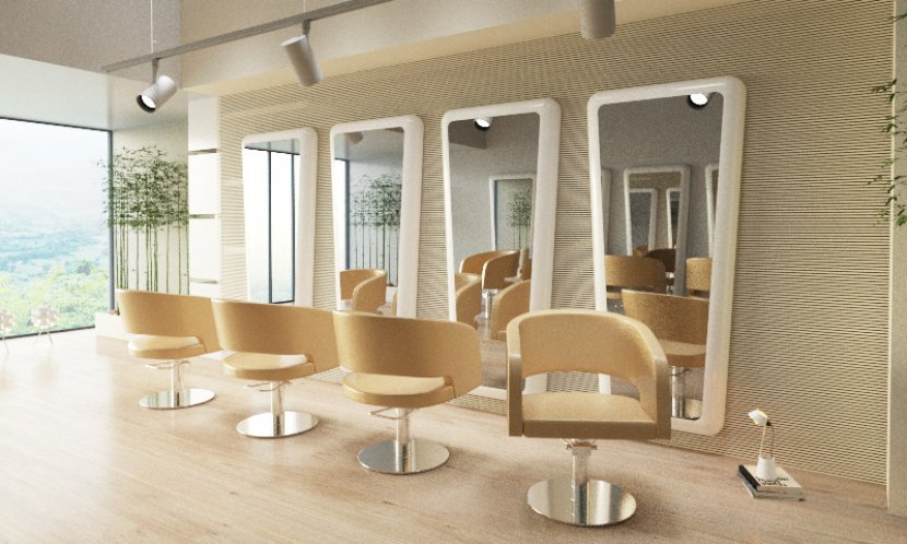 elegant hair salon